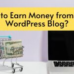how to earn money from free wordpress blog